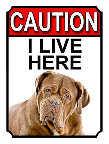 882 BOPNMJ Caution I Live Here 20 x 30 cm Vintage Metal Placa de pared Cartel para Cafe Bar Pub Bar Cocina o Tienda