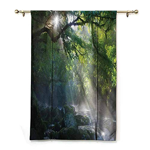 Roman Curtains for Windows Roman Curtains for Kitchen Stream in The Jungle Stones Under Shadows of Trees Sun Rays Mother Earth Theme Room Darkened (Rod Pocket Panel, Width 23' x Length 64')