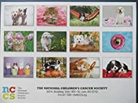 Furry Friends 2021 Calendar by The National Childrens Cancer Society 海外