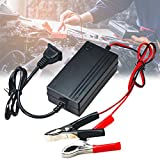 Enkomy Lead Acid Battery Charger, 12V Car Battery Charger for Boat Motorcycles Car
