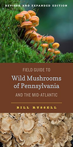 10 best field guide to mushrooms for 2020