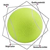 Groten Tennis Ball Kugel große riesige Hund Welpen Thrower Chucker Launcher Spielen Spielzeug C5 24CM - 9