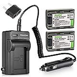 Kastar Battery (2-Pack) and Charger Kit for Sony DVD HandyCam DCR-DVD105 DCR-DVD202E DCR-DVD203 DCR-DVD203E DCR-DVD205 DCR-DVD305 DCR-DVD403 DCR-DVD405 DCR-DVD408 DCR-DVD505 DCR-DVD910 DCR-DVD92
