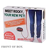 FOLE Prank Gift Box Pet Rocky