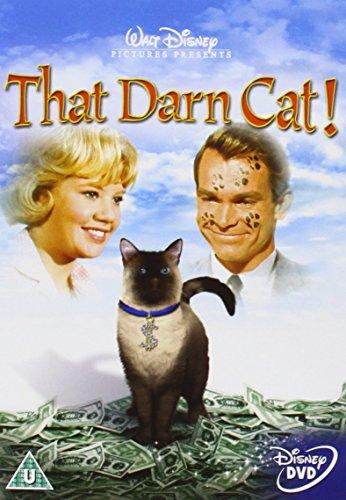 Alles für die Katz (Walt Disney, 1965) [DVD]