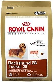 Royal Canin Croquetas para Salchicha, 4.53 kg (El empaque puede variar)