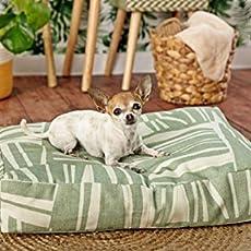 Eco Friendly Cama para perros 100% algodón orgánico: Amazon.es ...