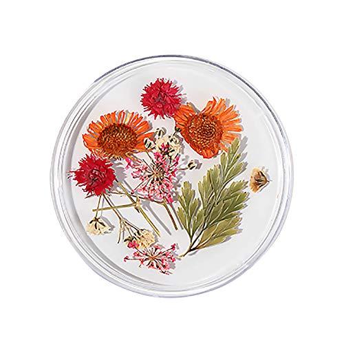 AQ89 Nail Art Dried Flower Japanese Nail Immortal 3D Lace Flower Daffodil Set