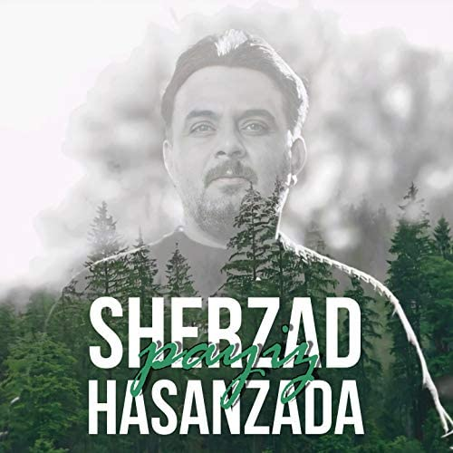 Sherzad Hasanzada