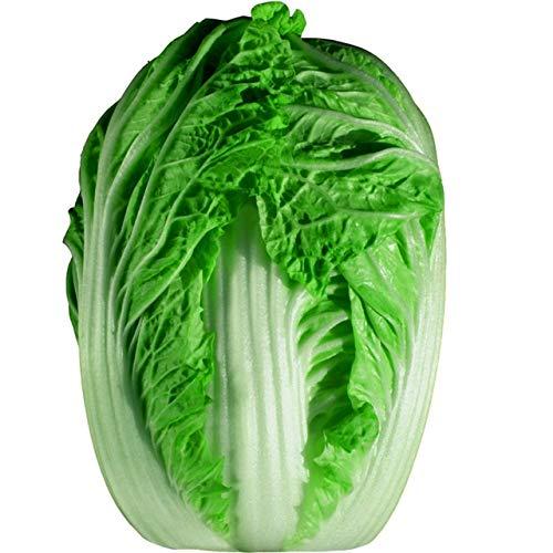 AGROBITS 200 graines/Hot Pack! Délicieux chou graines faciles à cultiver - Graines de légumes verts nourrissants ica Pekinensis de: chou A10