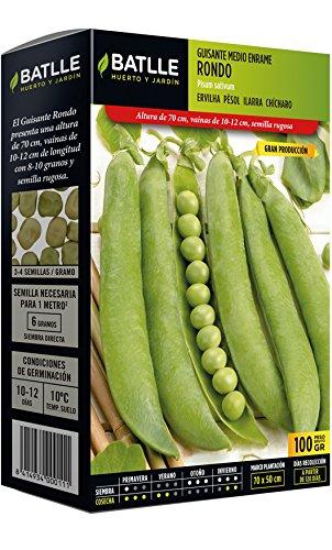 Batlle Graines de légumes – Rankerbse Moyen Rondo (100 g)