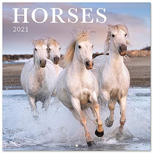 Erik väggkalender hästar – kalender 2021 för 16 månader