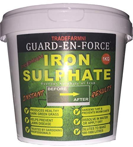 GUARD-EN-FORCE TRADEFARMNI Iron Sulphate 1 KG Tub Sulphate of Iron Moss...