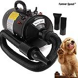 Forever Speed Secador de Pelo para Perros Gatos Mascotas Secador de Cabello Temperatura y Velocidad Ajustable (Estándar Europeo) (Negro, 2400W) (Negro-2400W)