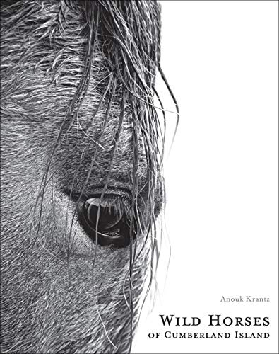 Wild Horses of Cumberland Island: Anouk Masson Krantz