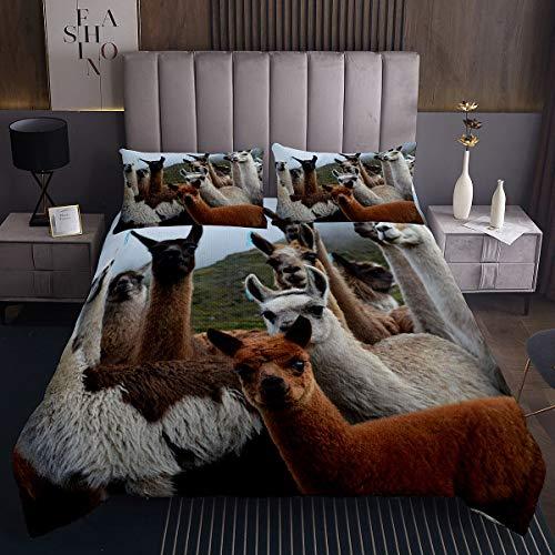 Juego de colcha acolchada con diseño de llamas en 3D, diseño de animales sudamericanos, para niños, niñas, adolescentes, decoración de dormitorio, llama, alpaca, tamaño king y 2 fundas de almohada