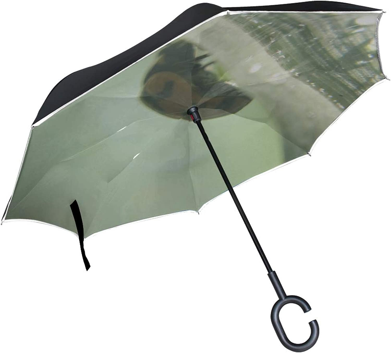 Rh Studio Ingreened Umbrella Ladybug Light Leaves Grass Large Double Layer Outdoor Rain Sun Car Reversible Umbrella