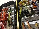 Lachs Fly Starter Box mit 24Double lachs Fliegen