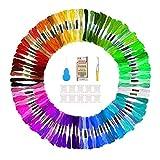 Vegena 100 Colores Hilos de Bordar, Kit de Hilos Cross Stitch Bordado Hilos Punto de Cruz Línea de Costura Coser Hilos Conjunto de Agujas Bordado (100 Colores)