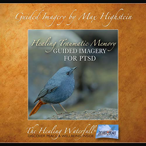 Guided Imagery for PTSD audiobook cover art