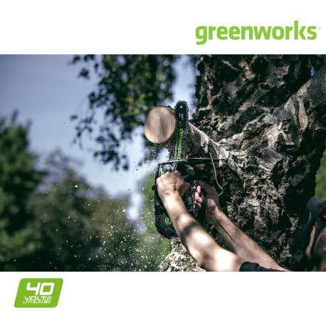Greenworks Motosega a Catena a Batteria GD40TCS (Li-Ion 40 V, 12 m/s Velocità Catena, 25 cm Sciabola, 120 ml Serbatoio dell'Olio, Potente Motore Brushless, senza Batteria e Caricabatterie)