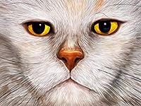 大人のジグソーパズル1000ピース大人のジグソーパズル1000ピース子供大きなジグソーパズルおもちゃギフト白猫