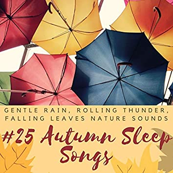 25 Autumn Sleep Songs: Gentle Rain, Rolling Thunder, Falling Leaves Nature Sounds