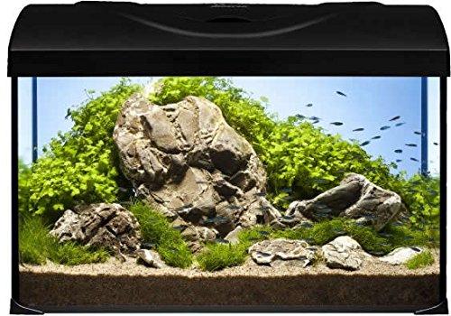 Diversa Aquarium Startup Set LED, rechteck schwarz, Aquarien komplett Set mit Glasbecken und Zubehör für Ihre Fische und EXPERT LED Beleuchtung