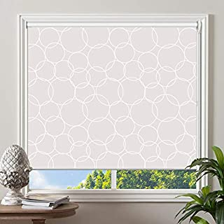 "PASSENGER PIGEON Blackout Window Shades, Premium UV Protection Water Proof Custom Roller Blinds, Printed Picture Window Roller Shade, 39"" W x 88"" L, JIHE-9"