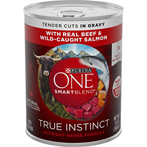 Purina ONE Natural Gravy Wet Dog Food, SmartBlend True Instinct Tender Cuts With Real Beef & Salmon - (12) 13 oz. Cans
