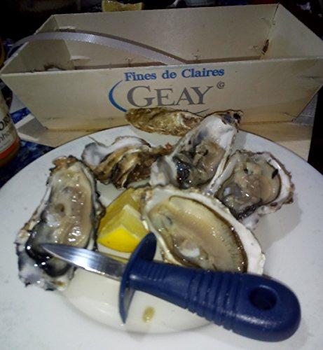 Austernöffner-Messerlanzette aus Edelstahl 14,5 cm Top-Qualität