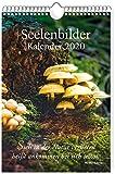 Seelenbilder-Kalender 2020: Wandkalender - Markus Schirner