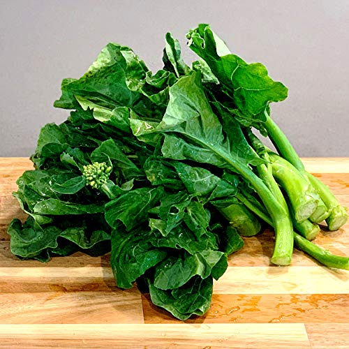 Gaea's Blessing Seeds - Gailan Seeds - Non-GMO Seeds with Easy to Follow Planting Instructions - Chinese Broccoli Chinese Kale Brassica Oleracea Kailaan Kai LAN 93% Germination Rate Net Wt. 5.0g