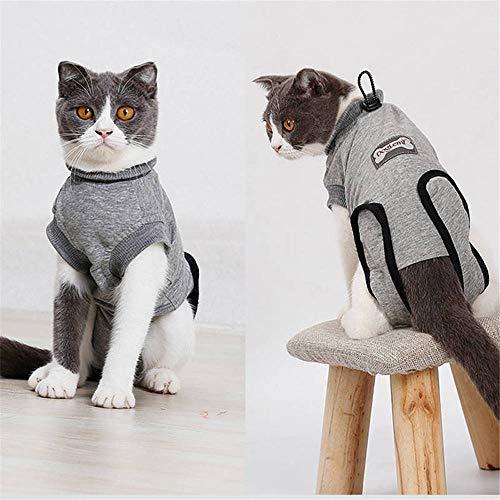 Doglemi - Morbida tutina per gatti per il recupero post-operatorio, alternativa al collare elisabettiano, con fibbia elastica, per cani e gatti con ferite e malattie dermatologiche, per uso in interni