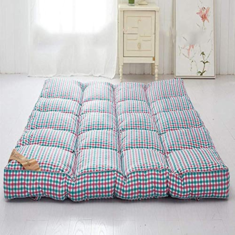Chengxxx Schlafende Tatami-Fumatte Zusammenklappbare weiche Dicke Matratzen Traditionelle Futon-Matte (Farbe   D, gre   180x200cm(71x79inch))
