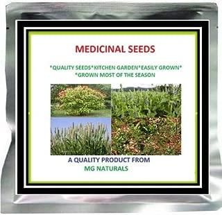 ShopMeeko Seed Thistle-SILYBUM MARIANUM Seeds -50 GM Seed (500 per Packet)