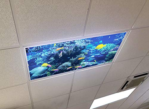 Tropical Reef - 2ft x 4ft Drop Ceiling Fluorescent Decorative Ceiling Light Cover Skylight Film