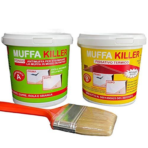 Kit Antimuffa Muffa Killer componente A+B da 1 litro + 1 litro, pittura antimuffa per interni per eliminare definitivamente la muffa dai muri