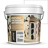 PINTURA FACHADAS ANTIMOHO, Repelente al agua, impermeable y antifisuras. (5 KG, BLANCO)