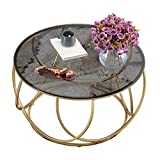 N/Z Daily Equipment Coffee Table Elegant Round Tempered Glass Tea Table Geometric Creativity Gold Frame Cocktail Table Living Room Snack Balcony Office End Table
