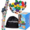 Hyponix 16 Tree Climbing Kit - 16 Rock Climbing Holds, 8 Ratchets - Tree Climbing Holds - Tree Climbing Kids - Ninja Warrior Obstacle Course for Kids - Tree Climber - Outdoor Play Equipment for Kids from Hyponix Sporting