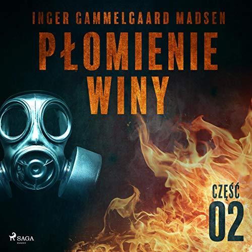 Płomienie winy - część 2 audiobook cover art