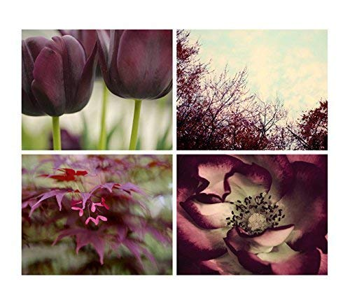 Nature Photography Direct stock discount Set of 4 Pictures Wall Burgundy Max 66% OFF Art Botanic