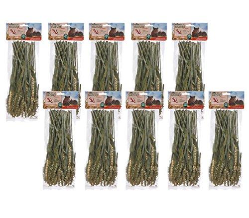 Dehner Best Nature Nagersnack, Weizenhalme, 10 x 75 g (750 g)