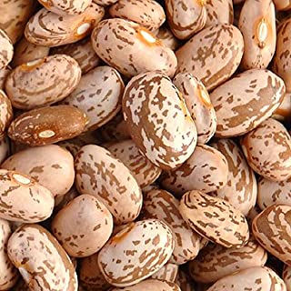Pinto Beans Organic - dried - 2 pounds