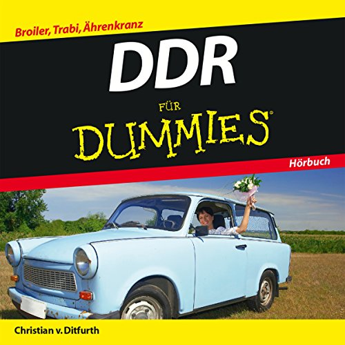 DDR für Dummies audiobook cover art