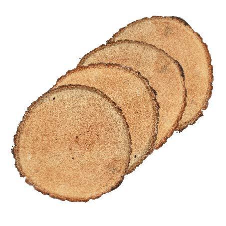 Mayde Basswood Decorative Tree Discs, Medium (7-9 inches, Set of 4)