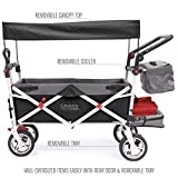 Creative Outdoor Push Pull Collapsible Folding Wagon Stroller Cart for Kids   Silver Series   Beach Park Garden & Tailgate   Black