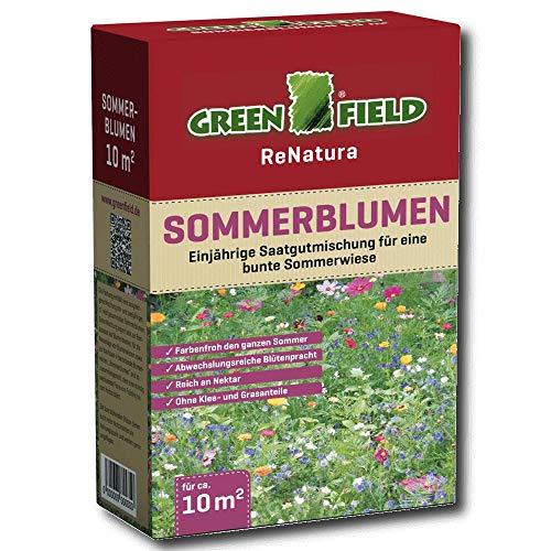 Greenfield 63227 Fleurs d'Été 250 g pour Env. 10 qm