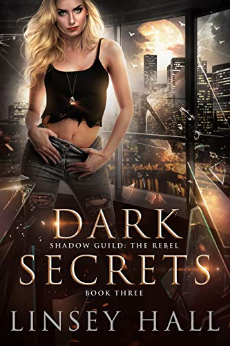 Dark Secrets (Shadow Guild: The Rebel Book 3)
